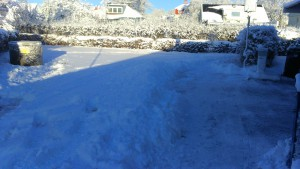 vinter :)